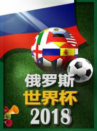 [2018世界杯門票預訂] 2018-6-26 17:00 丹麥 vs 法國(M37)