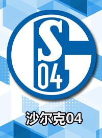 [德甲門票預訂] 2018-2-17 15:30 沙爾克04 vs 霍芬海姆