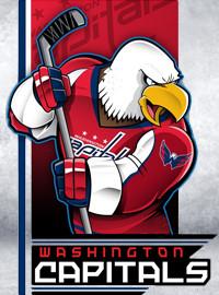[NHL門票預訂] 2017-12-28 19:30 華盛頓首都人隊 vs 波士頓棕熊隊