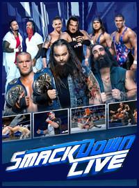 [WWE門票預訂] 2018-4-10 18:30 2018年摔跤狂熱大賽